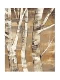 Wandering Through the Birches II Giclée premium par Albena Hristova