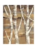 Wandering Through the Birches I Giclée premium par Albena Hristova