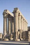 Colonnade  Luxor Temple  Luxor  Thebes  UNESCO World Heritage Site  Egypt  North Africa  Africa