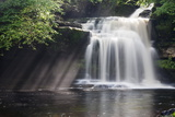 Westburton Waterfall  Westburton  Yorkshire Dales  Yorkshire  England  United Kingdom  Europe