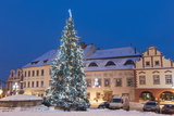 Snow-Covered Christmas Tree and Renaissance Buildings  Jihocesky  Czech Republic  Europe