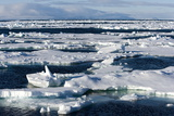 Pack Ice  Spitsbergen  Svalbard  Norway  Scandinavia  Europe