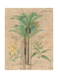 Palm Study II