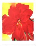 Amaryllis rouge Reproduction d'art par Georgia O'Keeffe