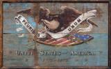 United States USA Shield Vintage Wood Sign
