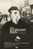 Elephant Man (The)