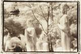 Standing Buddhas  Agutthaya  Thailand