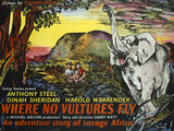 Where No Vultures Fly