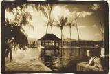 Pool and Palms  Australia