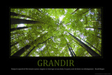 Grandir (French Translation)
