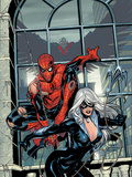 Marvel Knights Spider-Man No4 Cover: Spider-Man and Black Cat