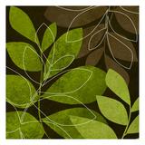 Green Brown Leaves 2