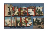 Greetings from Black Hills South Dakota Postcard