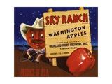 Sky Ranch Brand Washington Apples Fruit Crate Label