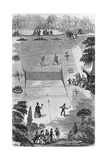 Illustration of How to Play Lawn Tennis  1874