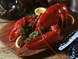 Cooked Lobster on Wooden Platter with Lemon Wedge and Drawn Butter