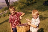 1960s Two Laughing Boys Carrying Basket of Harvested Grapes