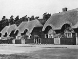 Thatched Cottages in Ampthill
