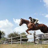 1970s Woman Equestrian Rider Jumping over Split Rail Fence During Steeplechase Horse Race