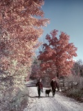 1950s-1960s Senior Couple Walking Autumn Country Road