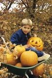 1980s Boy Setting in Wheel Barrow with Halloween Pumpkins Looking at Camera