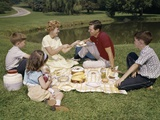1960s Family Mother Father Daughter and Two Sons Picnicking in Park Outdoor