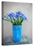 Iris Flowers Gallery-Wrapped Canvas