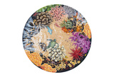 Tidepool II - Circular View of a Hawaiian Tide Pool