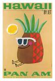 Hawaii by Jet - Pan American Airlines (PAA) - Mr Pineapple Head