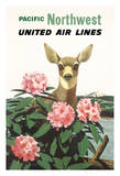 Pacific Northwest - United Air Lines