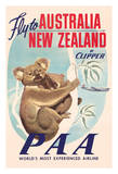 Australia  New Zealand - Pan American Airways (PAA) - Koala Bears