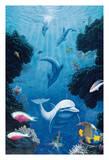 Dolphin Smiles - Hawaiian Dolphins (Naia)