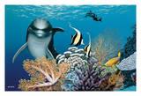 Coral Garden - Hawaiian Dolphin (Nai'a)