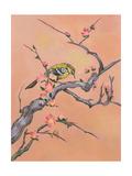 Asian Bird Illustration I