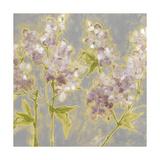 Ethereal Flowers II