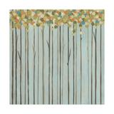 Birch Grove II Reproduction d'art par Erica J. Vess