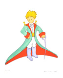 The Little Prince and his Cape (lg)