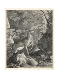 Woodland Deer VII