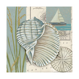 Seaside Shell I