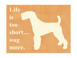 Life Is Too Short Wag More