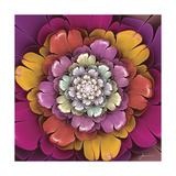 Fractal Blooms II
