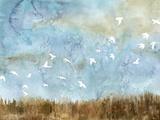 Birds in Flight I