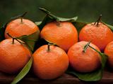 Satsuma Tangerines I