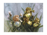 Hadfield Irises I