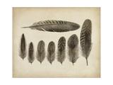Vintage Feathers VIII