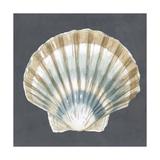 Shell on Slate III Reproduction d'art par Megan Meagher
