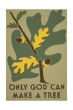 Only God Can Make a Tree  Oak