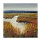Marsh Land I