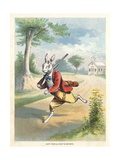 The Silly Hare  Children's Illustration