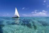 Dhow on Clear Seas